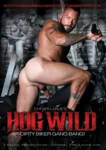 Channel 1 Releasing - Hog Wild