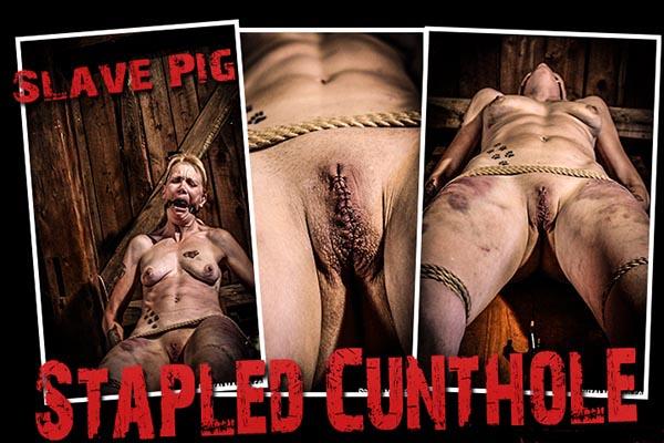 Stapled Cunthole [BrutalMaster] Slave Pig (186 MB)