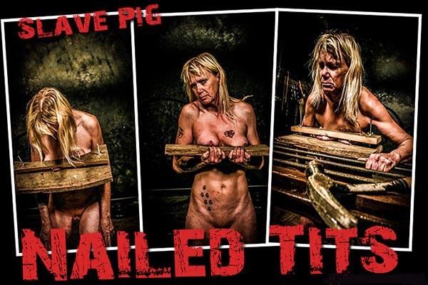 Nailed Tits [BrutalMaster] Slave Pig (146 MB)