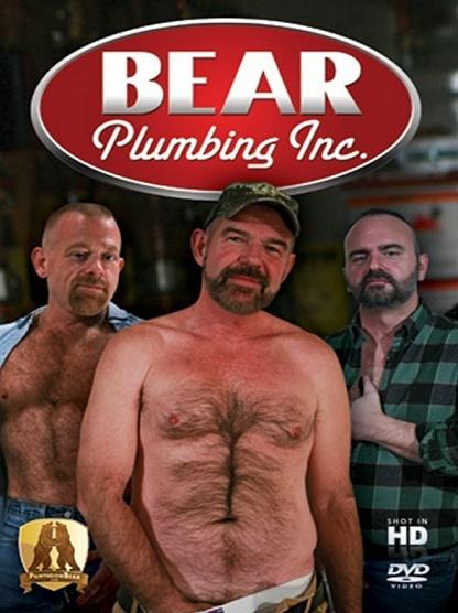 Pantheon - Bear Plumbing Inc