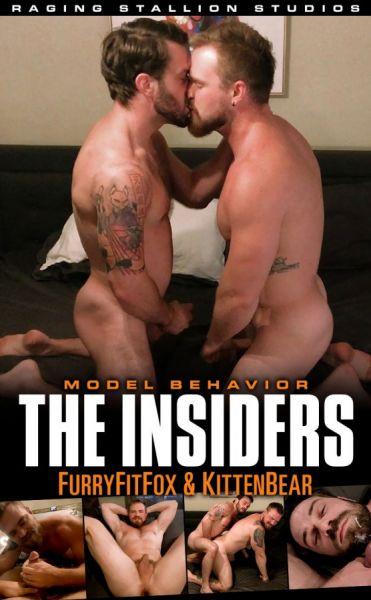 RS - The Insiders - Kitten Bear & Furry Fit Fox