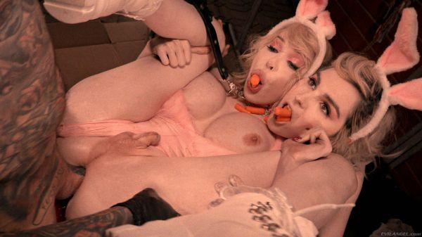 Sarina Valentina, Ella Hollywood - Trans - TS Ella + TS Sarina + Stud = Threesome - Tran1mals (FullHD 1080p) [2020]