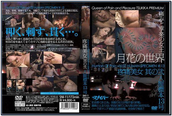 SNI-11 Nii Human Specimen No  13, Its Pain Beauty BDSM JAV Femdom