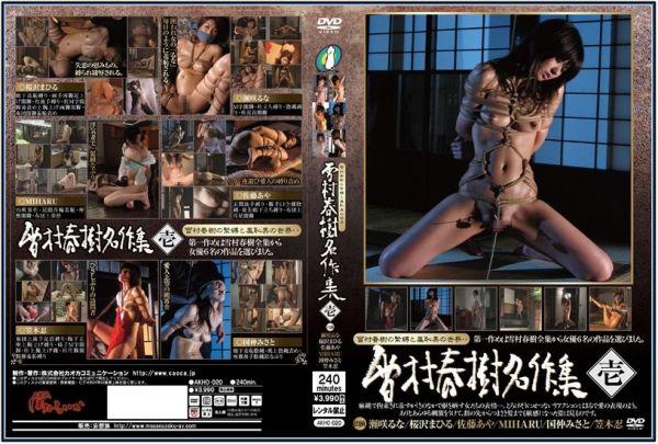 AKHO-020 Haruki Yukimura 's Masterpiece Collection BDSM