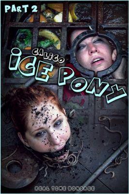Real Time Bondage – Aug 15, 2020: Ice Pony II | Calico