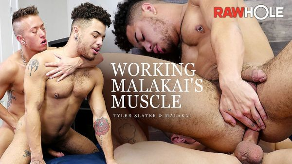 RH_-_Working_Malakais_Muscle.jpg