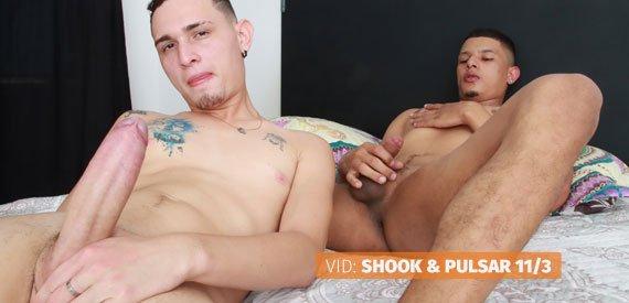NakesPapis - Shook & Pulsar