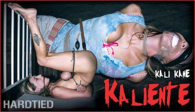 Hardtied – Kaliente – Kali Kane – 2020-12-02