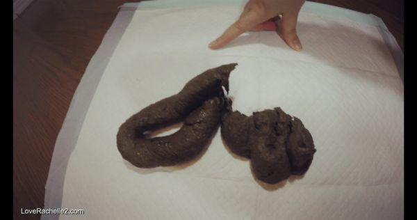 LoveRachelle2 – Fat Fudge Dragons