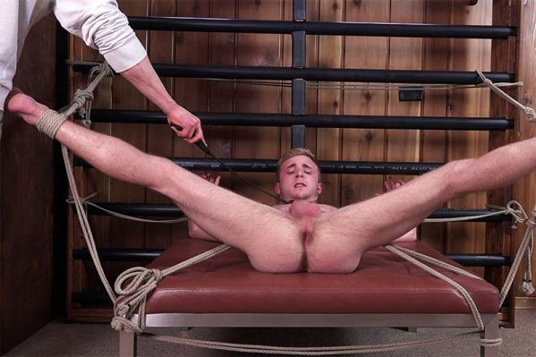 DreamBoyBondage - Seth Stark - Young And Willing - Chapter 7