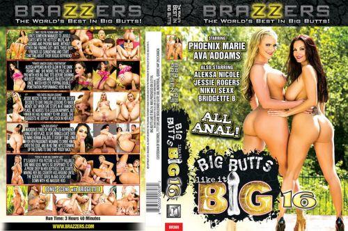 Big Butts Like It Big 16 (2014)