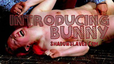 Shadow Slaves – Slave Bunny – Introducing Bunny