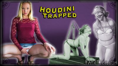 Hardtied – Houdini Trapped – Tracey Sweet