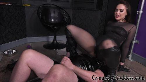 Gynarchy Goddess Goddess Serena: Puppy Obedience Training
