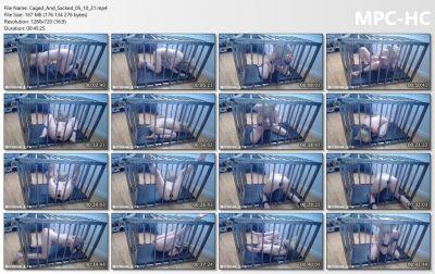 Bondage Life - Caged And Sacked Rachel Greyhound