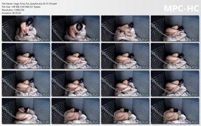 Bondage Life - Cage Time For Greyhound