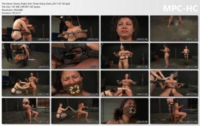 Real Time Bondage - Dana's Plight Part Three - Dana Vixen