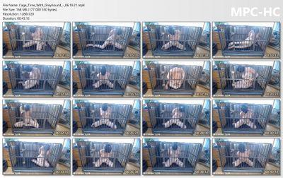 Bondage Life - Cage Time With Greyhound Rachel Greyhound