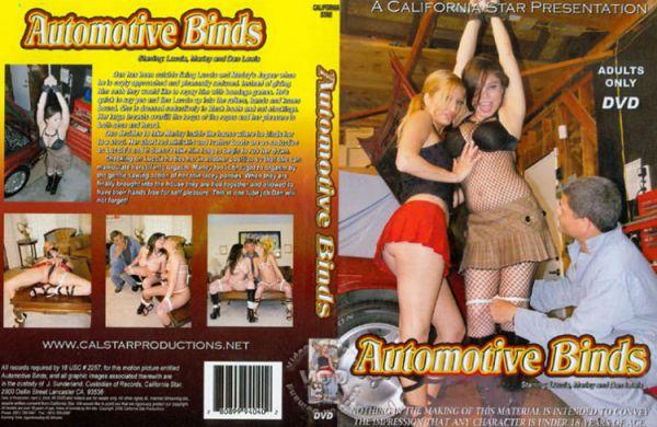 Automotive Blinds [Calstar Films] Luccia Reyes
