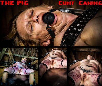 Brutal Master - The Pig - Cunt Caning
