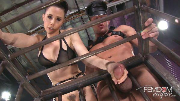 Interactive Forced Bi Cuckold - Chanel Preston - FemdomEmpire