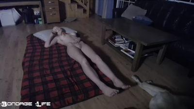 Bondage Life – Goodnight Rachel Greyhound