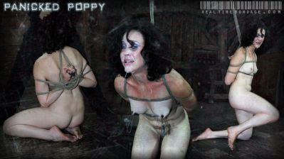Real Time Bondage – Panicked Poppy – Poppy James