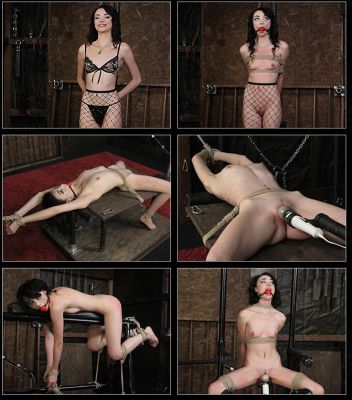 Submissive Appeal – Cecelia Taylor