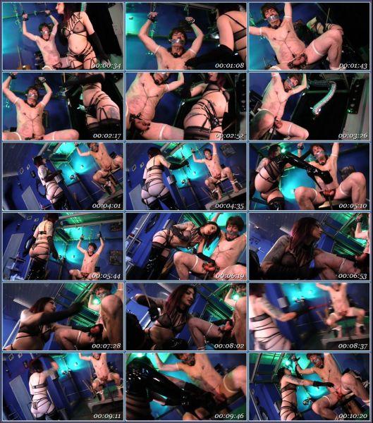 Femdom 2305162 Female Domination