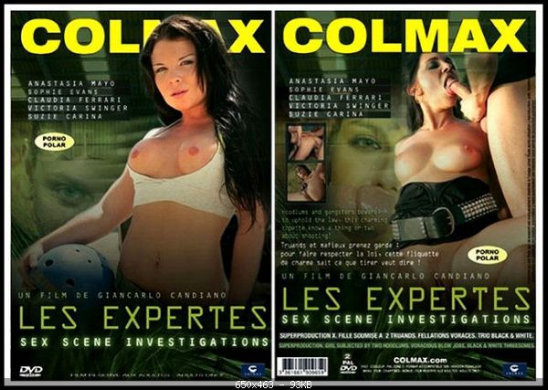 Les Expertes DVDRip