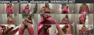 tslatex_com_laviny_albuquerque_SHEMALEHD.NET.jpg