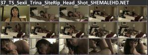 37_TS_Sexii_Trina_SiteRip_Head_Shot_SHEMALEHD.NET.jpg