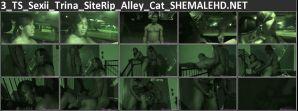 3_TS_Sexii_Trina_SiteRip_Alley_Cat_SHEMALEHD.NET.jpg