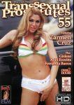38_Transsexual_Prostitutes_SHEMALEHD.NET.jpg