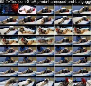 65-TvTied.com-SIteRip-mia-harnessed-and-ballgagged-HD-SHEMALEHD.NET.wmv.jpg