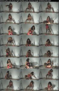 30-Krissy4u.com-Asian-Tgirl-SiteRip-pink-chemise-large-SHEMALEHD.NET.jpg