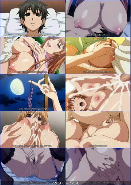 Hentai_3785_Dekakute_Ecchi_Na_Ore_No_Ane_vol.1_t.jpg