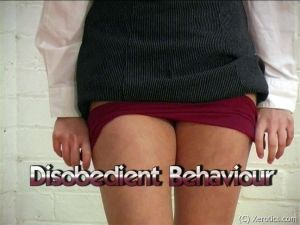 Disobedient Behaviour - image2