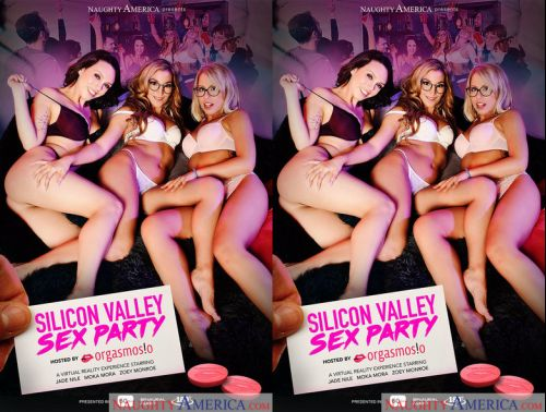 3D VR - Dylan Snow, Ryan Driller - Silicon Valley Sex Party - NaughtyAmerica - Jan 26 2018