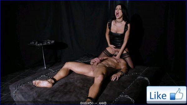 Stockings_5229_BDSM_Chamber_of_Humiliation_m.jpg