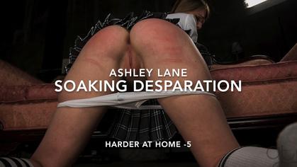 assumethepositionstudios – MP4/HD – THE MASTER,ASHLEY LANE – SOAKING DESPERATION – ASHLEY LANE – HARDER AT HOME 5 | JUL. 31, 18