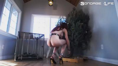 BondageLife - Decorating The Christmas Tree - 12/24/2018