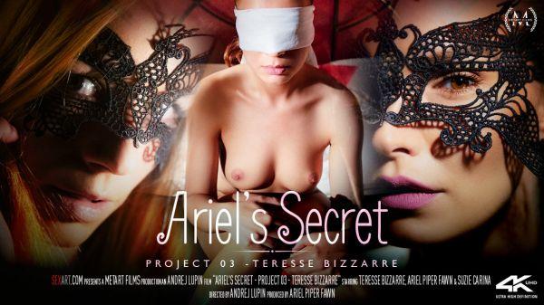 Ariels Secret Project 03 Teresse Bizzarre