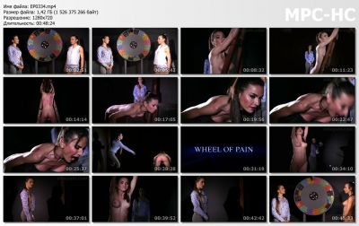 ElitePain - Wheel of Pain 26