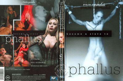 Phallus