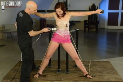 Society SM – Punishments and Rewards – Jodi Taylor