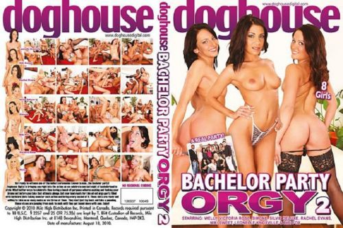 Bachelor Party Orgy 2 (2010)