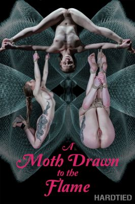 Hardtied – Feb 13, 2019: A Moth Drawn To The Flame | Cora Moth