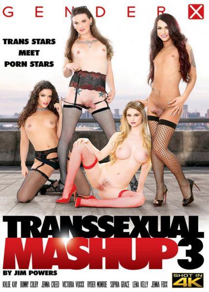 GenderX: Khloe Kay, Jenna Creed, Ryder Monroe, Lena Kelly - Transsexual Mashup 3 (Split Scene) [SD/480p]