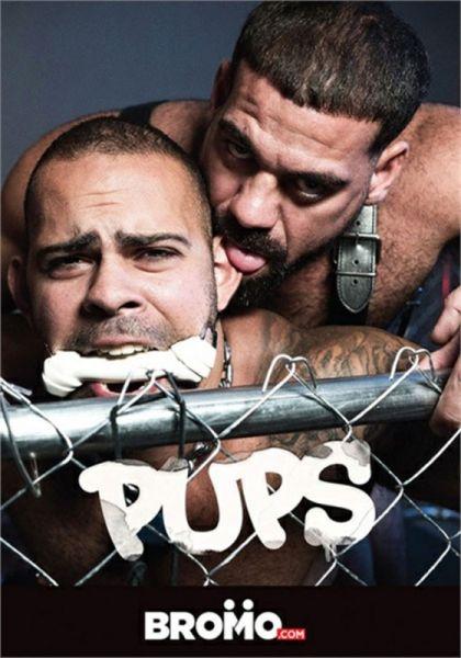BRM - Pups